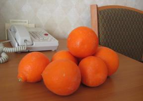 oranges1.jpg