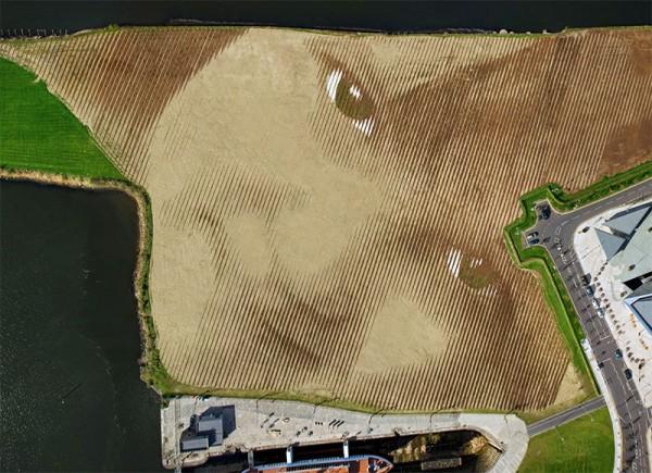 Monumental-Acre-Portrait-in-Belfast-by-Jorge-Rodríguez-Gerada-1-600x435