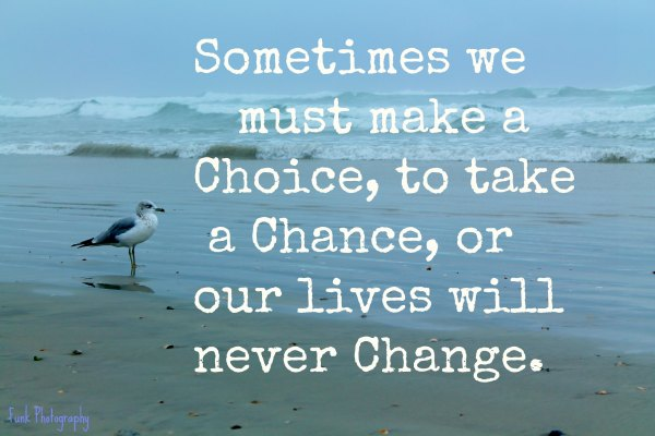quote-w-ocean-bird-take-a-chance-to-change-IMG_8740