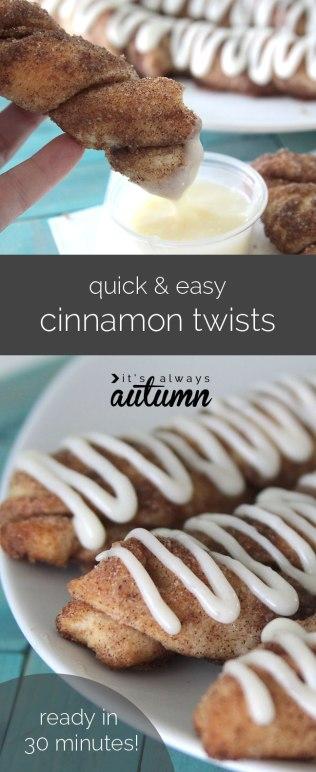 cinnamon-twists-easy-quick-breadsticks-recipe