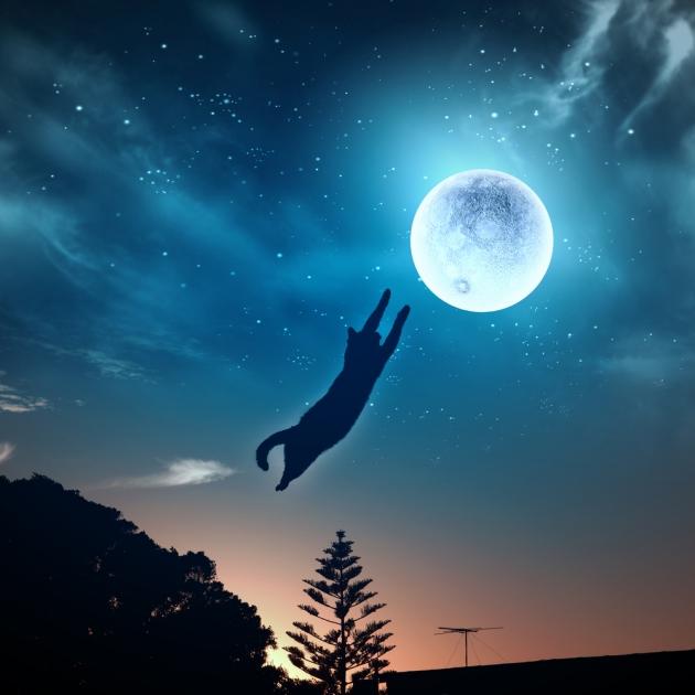 flying-cat-moon