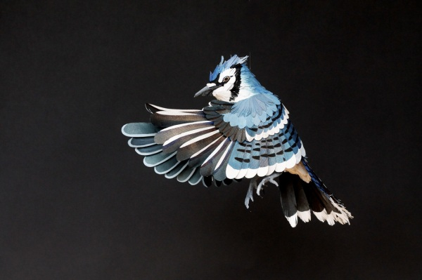paper-bird-sculptures12