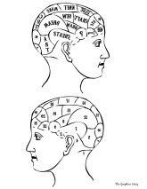 Pherenology-Head-Printable-GraphicsFairy-sm