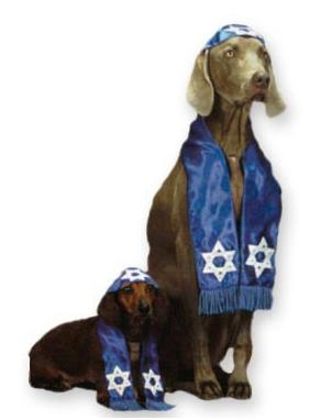 halloween-dog-costume-bar-mitzvah-jewish-rabbi
