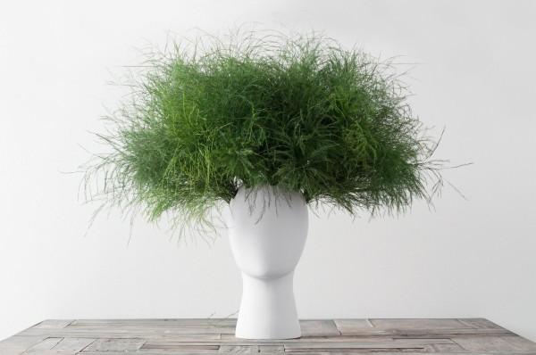 the-wig-vase-by-tania-da-cruz-22
