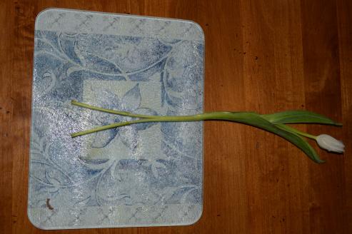 split-stem
