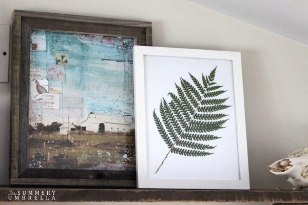 diy-fern-art-6