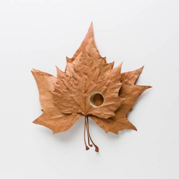 Leaf-Art6