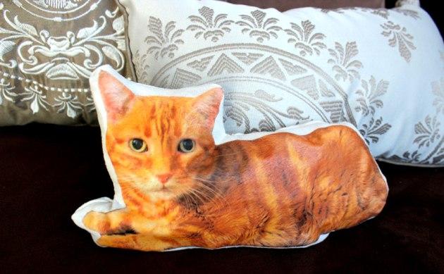 diy-cat-pillow-closeup.jpg